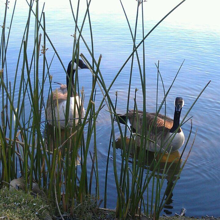 El Dorado Park Nature Center Trail