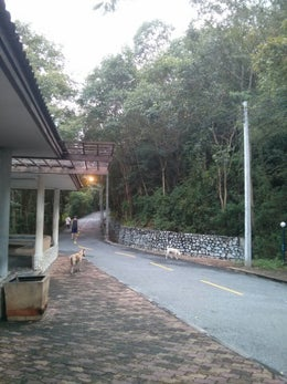 Pratamnak Hill