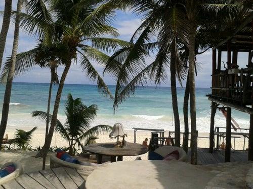 Papaya Playa