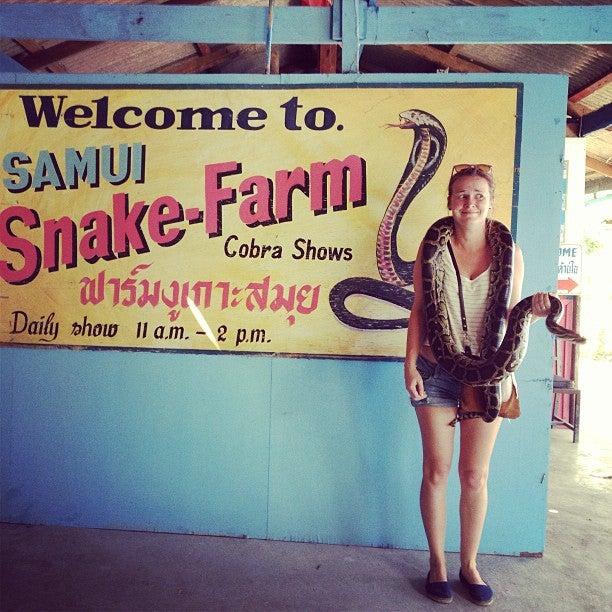 Snake Farm Show
