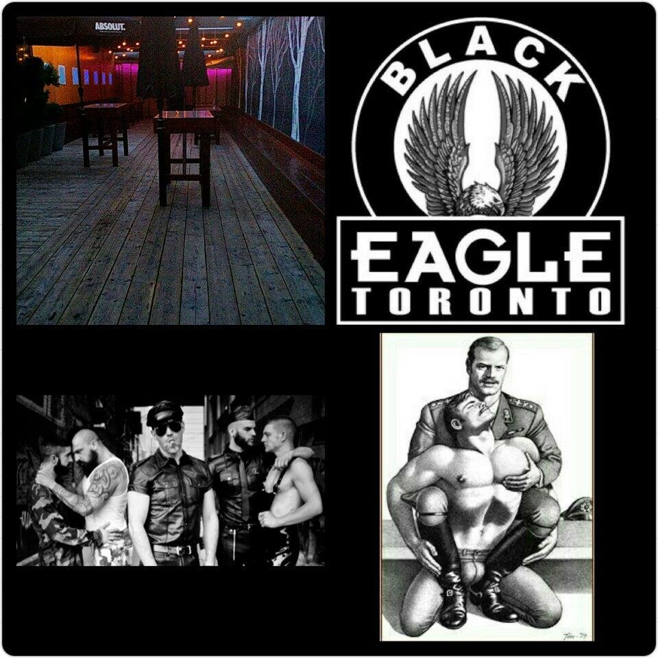 Photo of Black Eagle