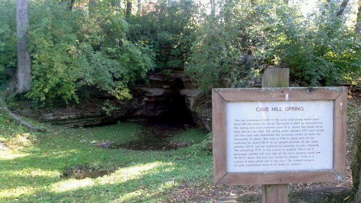 Cave Hill Safari