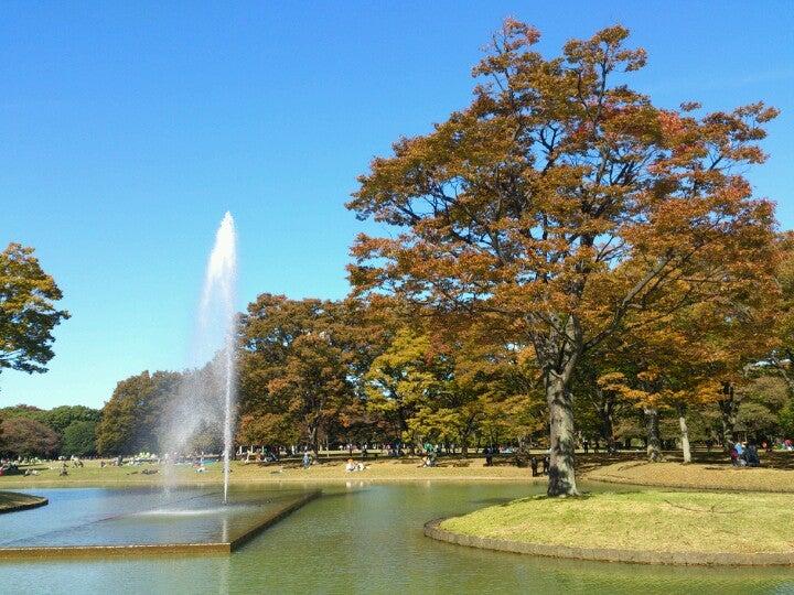 Yoyogi Koen (Park)