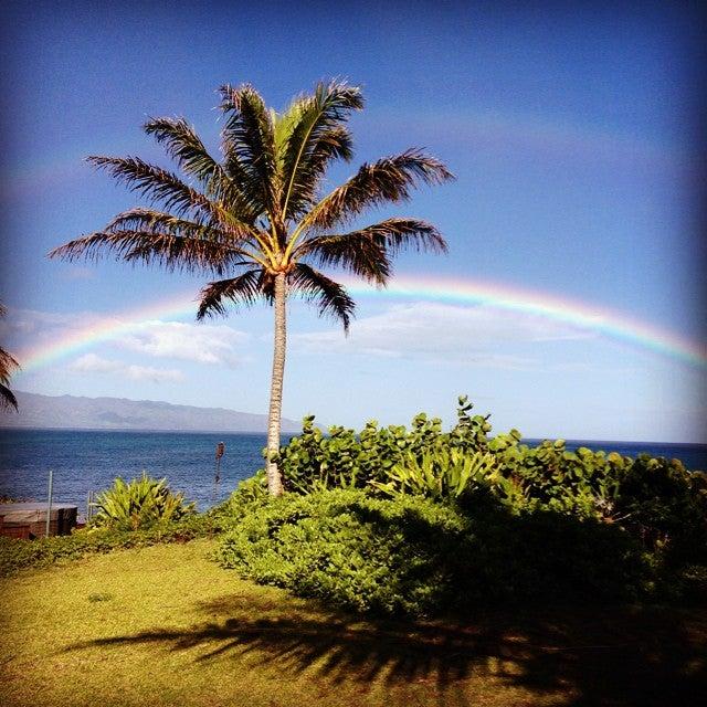 Photo of Waimea Bay
