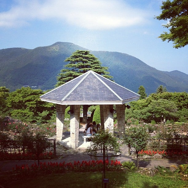 Japanese Inspired Garden In Grant Park: Attraction In Hakone, Japan