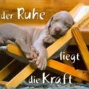 jared-m-kretchmer-205467