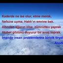 pinar-29263545