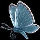 marius-235717