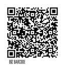 koen-wilhelm-9987076