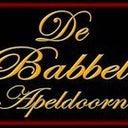 babbel-apeldoorn-10968135