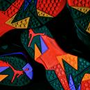 freshfliedfish