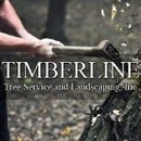 Timberline Tree and Landscaping
