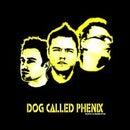 Dog Called Phenix