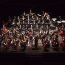 FORM Orchestra Filarmonica Marchigiana