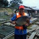 R. Dimas Setyawan