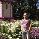 Thyu Naung
