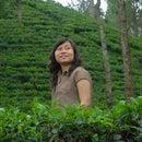 Yunita Assah