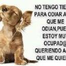 Vero Nik Pacheco Merino
