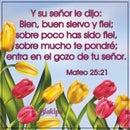 Yoly R.S.