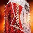 Budweiser Brasil