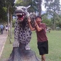 Leo Bangkit