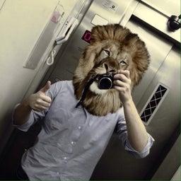 leandrolion lion