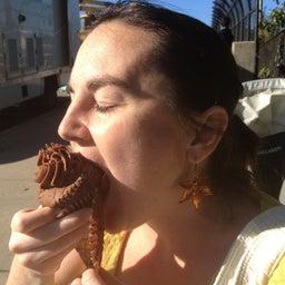 Boston Chocolate