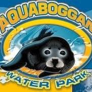 Aquaboggan Waterpark