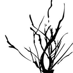 tree bistro