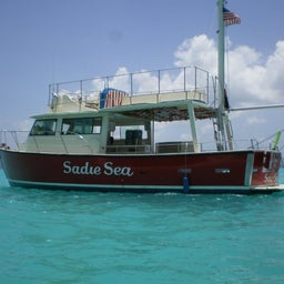 Sadie Sea