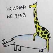 Shako Meladze